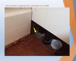 Vermiculite from Wall